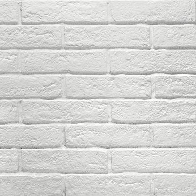 ΠΛΑΚΑΚΙ New York WHITE 6x25cm