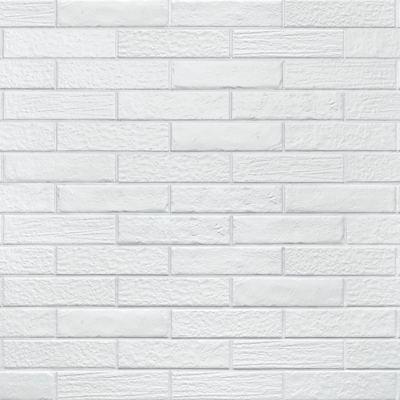 ΠΛΑΚΑΚΙ URBAN & COLORS Bianco 6x25cm