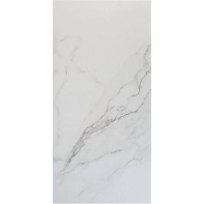 ΠΛΑΚΑΚΙ MARMI CARRARA Bianco Lap. 35x70cm