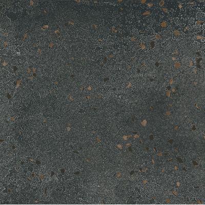 ΠΛΑΚΑΚΙ LUNAR Meteorite