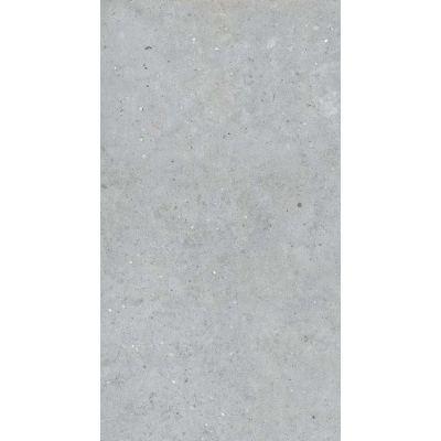 ΠΛΑΚΑΚΙ BIOPHILIC Grey 60x120cm Rett.
